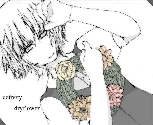 dryflower